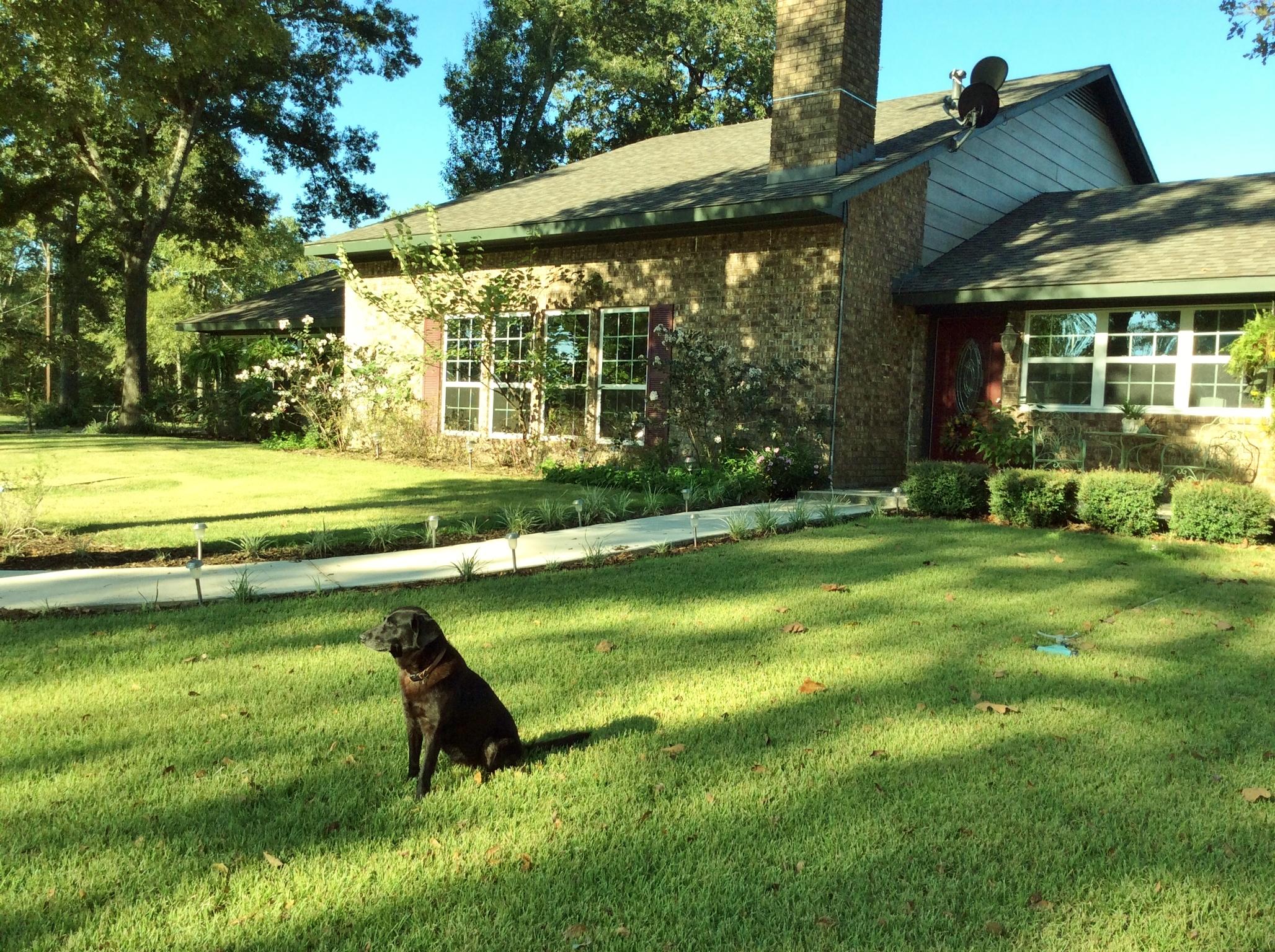 Clements Ln, Old Washington, Texas 77868