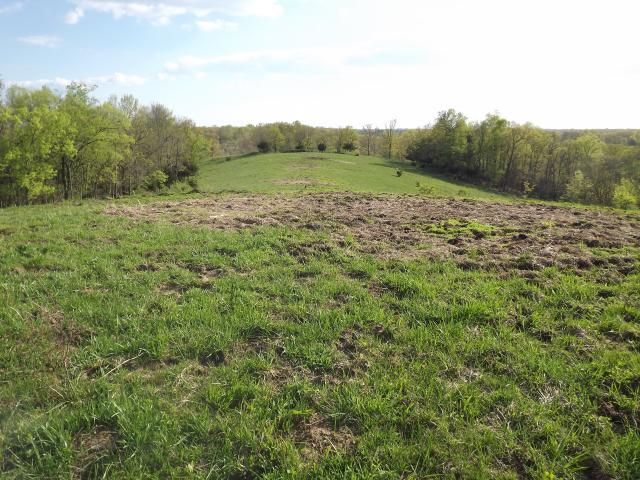 Battle Road, Mackville, Kentucky 40040