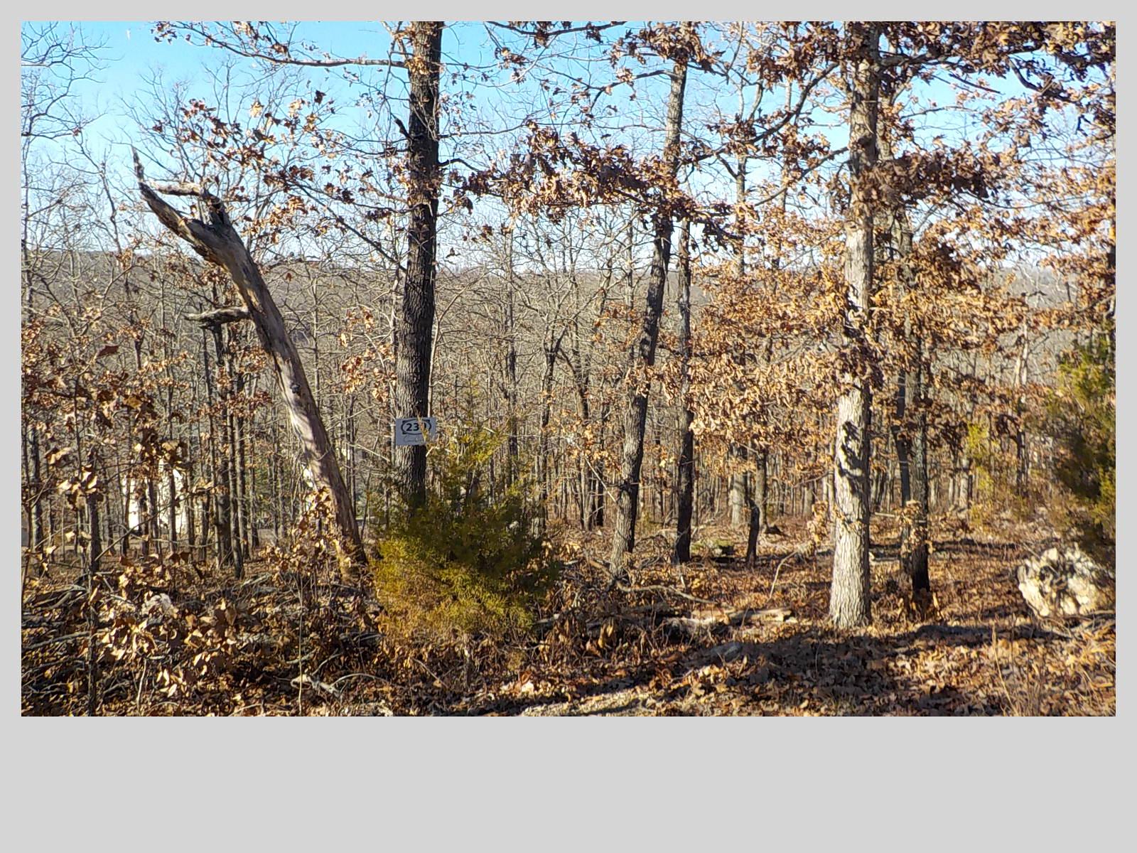 239 N. Boulder Creek Ct., Camdenton, Missouri 65020