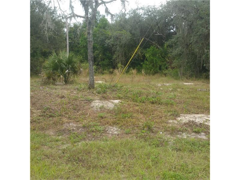 12551 Moon Lake Cr., New Port Richey, Florida 34654