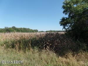 16814 New Dennison Rd, Marion, Illinois 62959