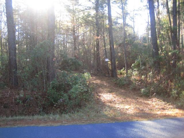 0 Gibson Road, Islandton, South Carolina 29929