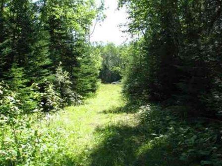 47E Camp 12 Rd, Hovland, Minnesota 55606