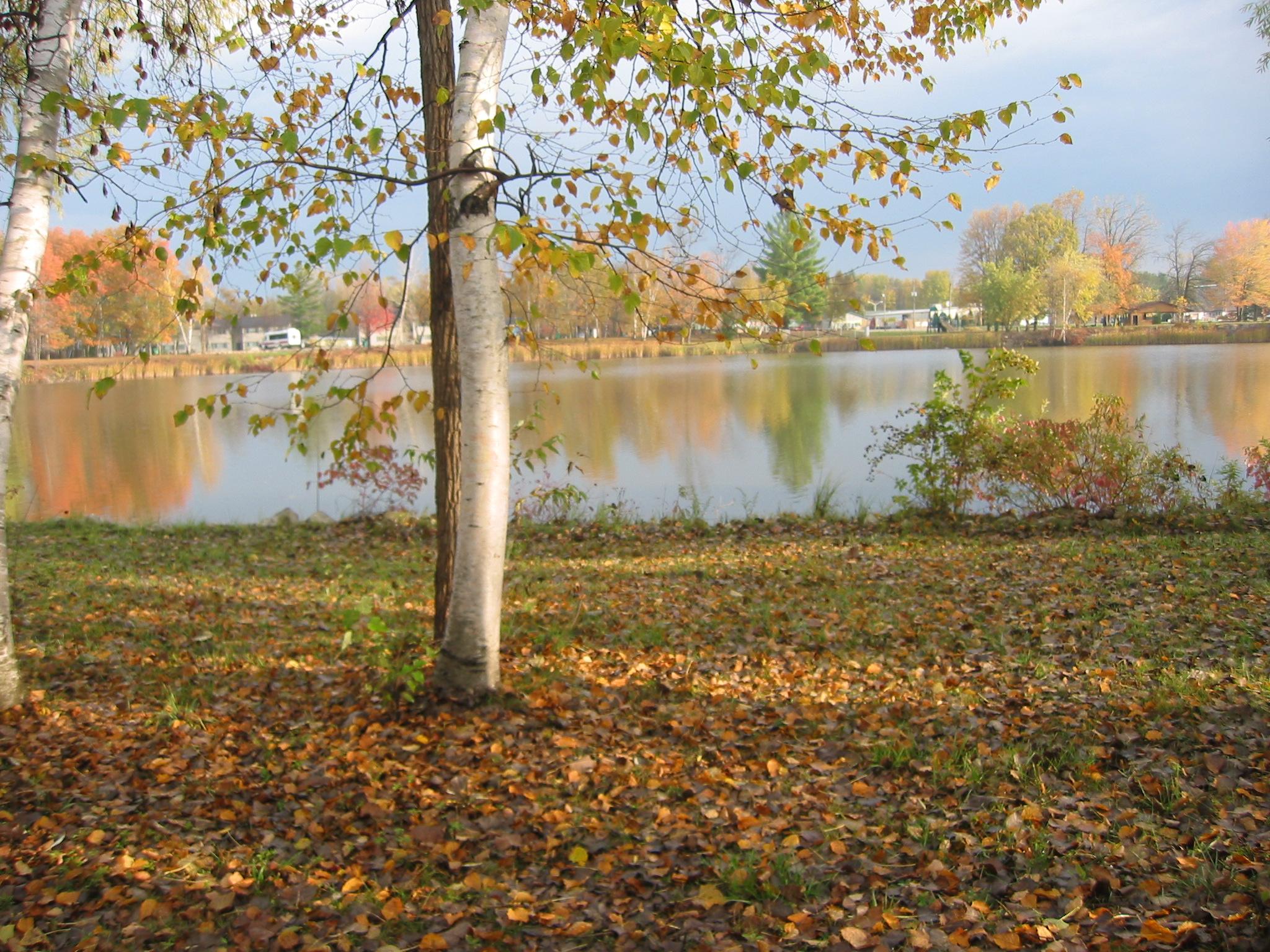 Lot 4 Lakeview, Beaverton, Michigan 48612