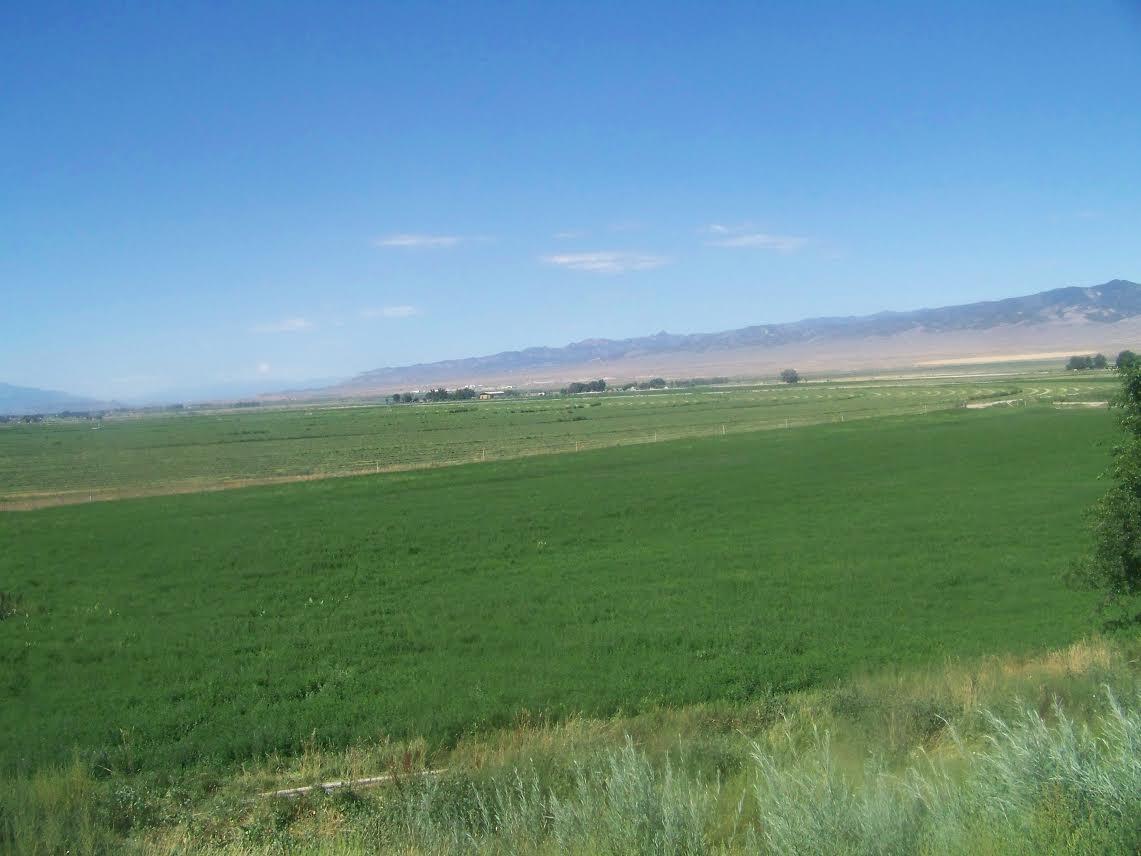 1065 S. Factory Rd., Centerfield, Utah 84622