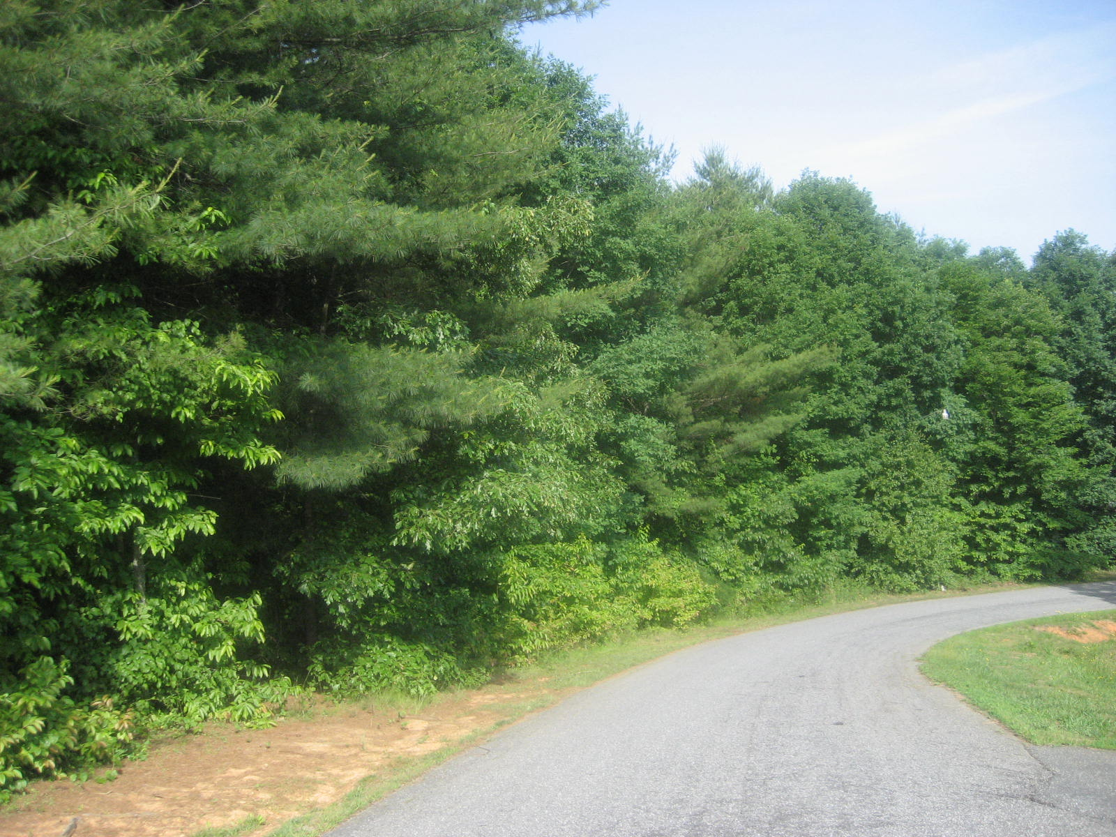 Lot 20 River Ridge Ln., Rhodhiss, North Carolina 28667