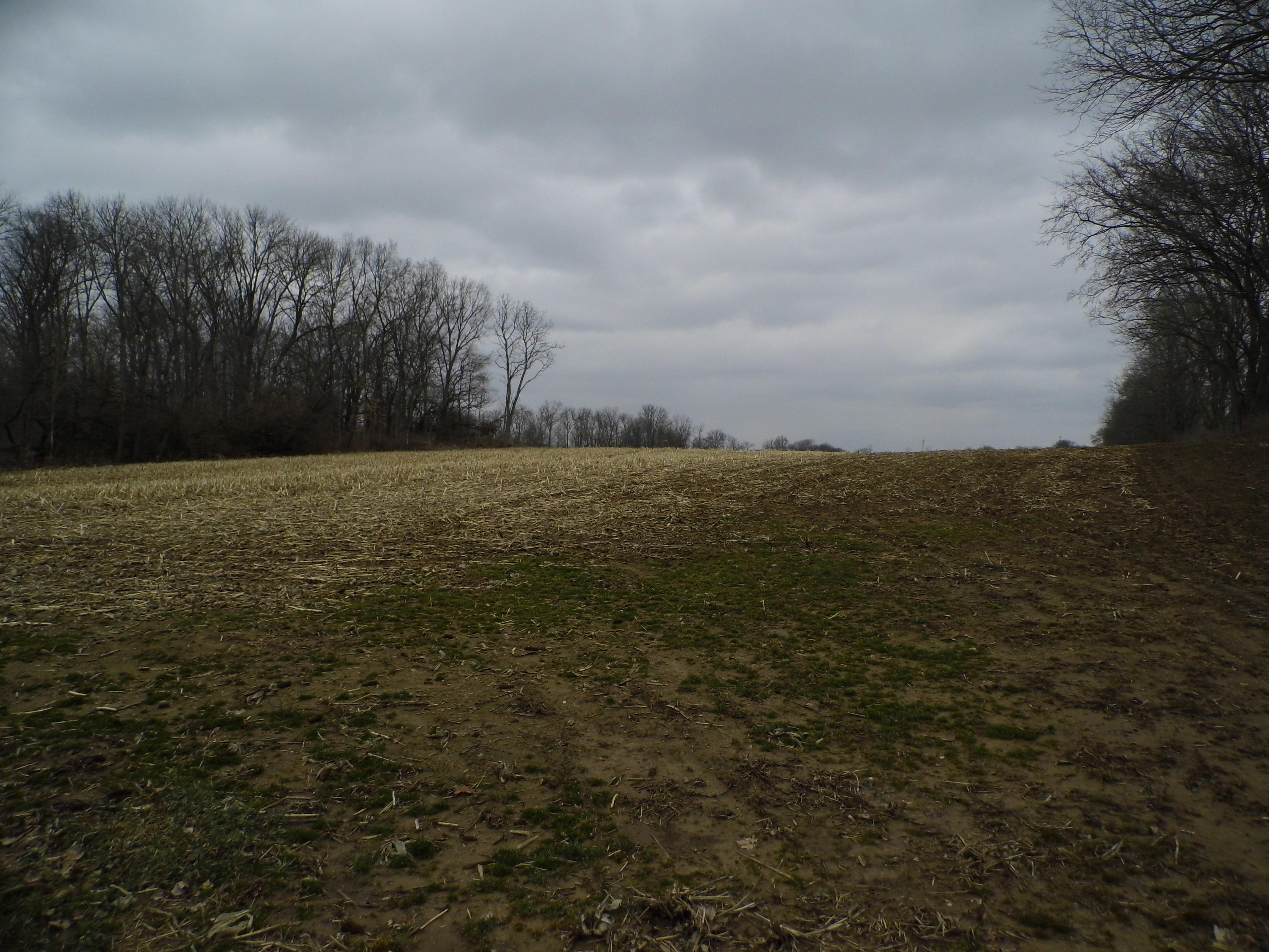 Scott Road, Oxford, Ohio 45056