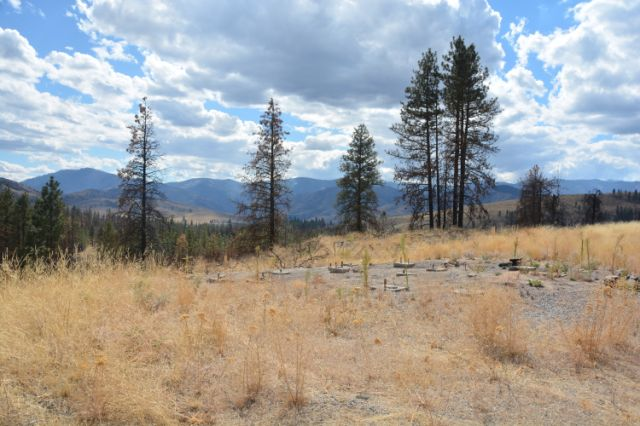 17 Russian Hills Rd, Methow, Washington 98834