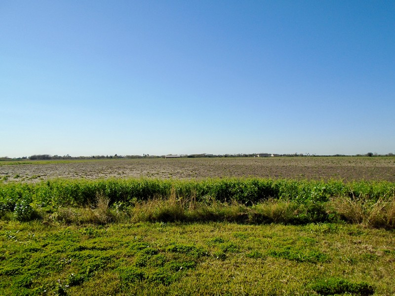 0 White Ranch Road, La Feria, Texas 78559