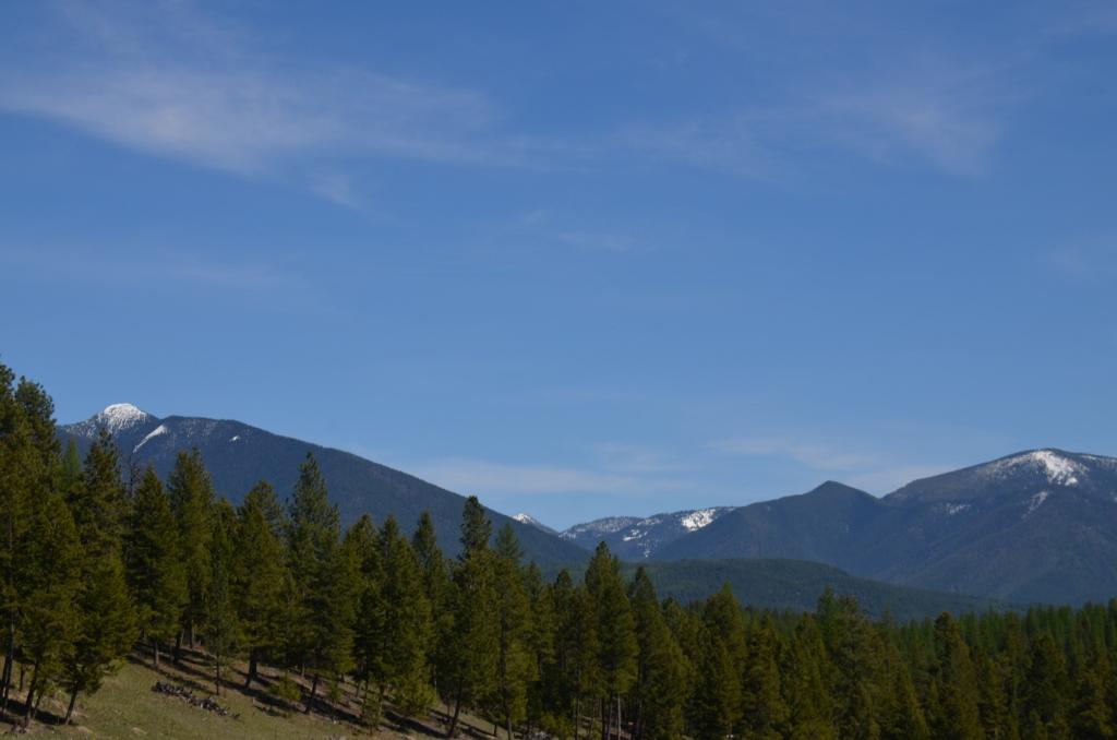 nhn Lacklan Road, Eureka, Montana 59917