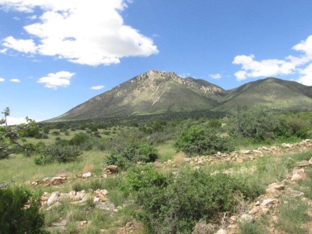 LOT 11 Gato Monte, Carrizozo, New Mexico 88301