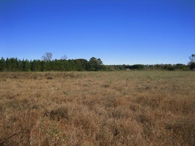 3053 Green Pond Hwy, Walterboro, South Carolina 29488