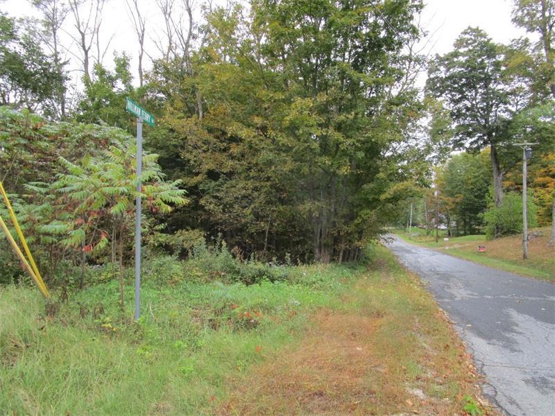 TBD Hillman Ferry Road, Livermore Falls, Maine 04254