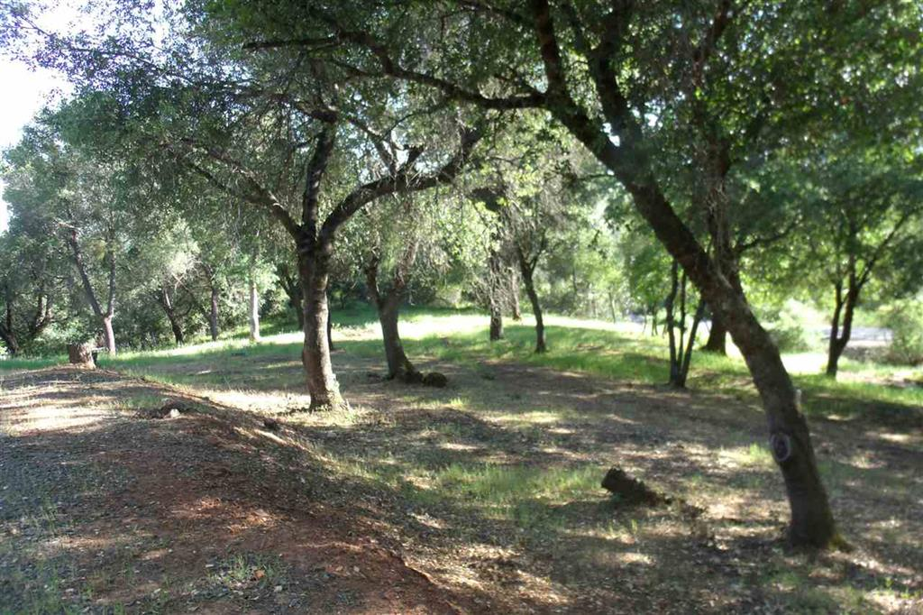 13532 North Star Court, Sutter Creek, California 95685