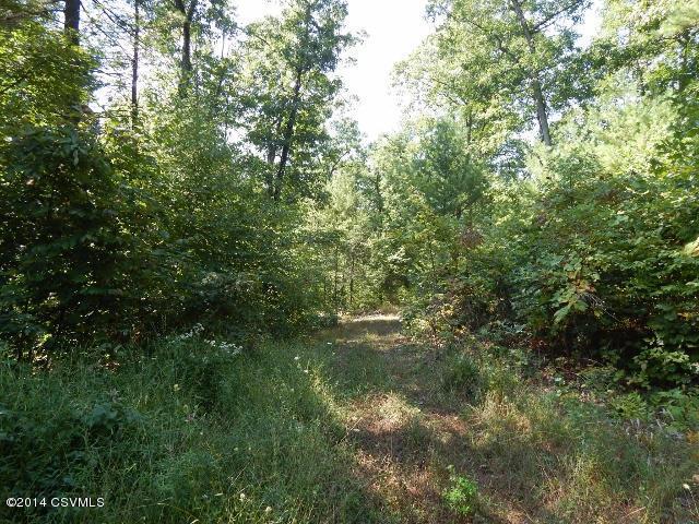 Paddy Mountain Road, Millmont, PA 17845