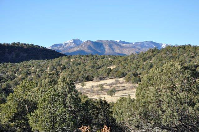 Tract B Laughing Horse Road, Capitan, New Mexico 88316
