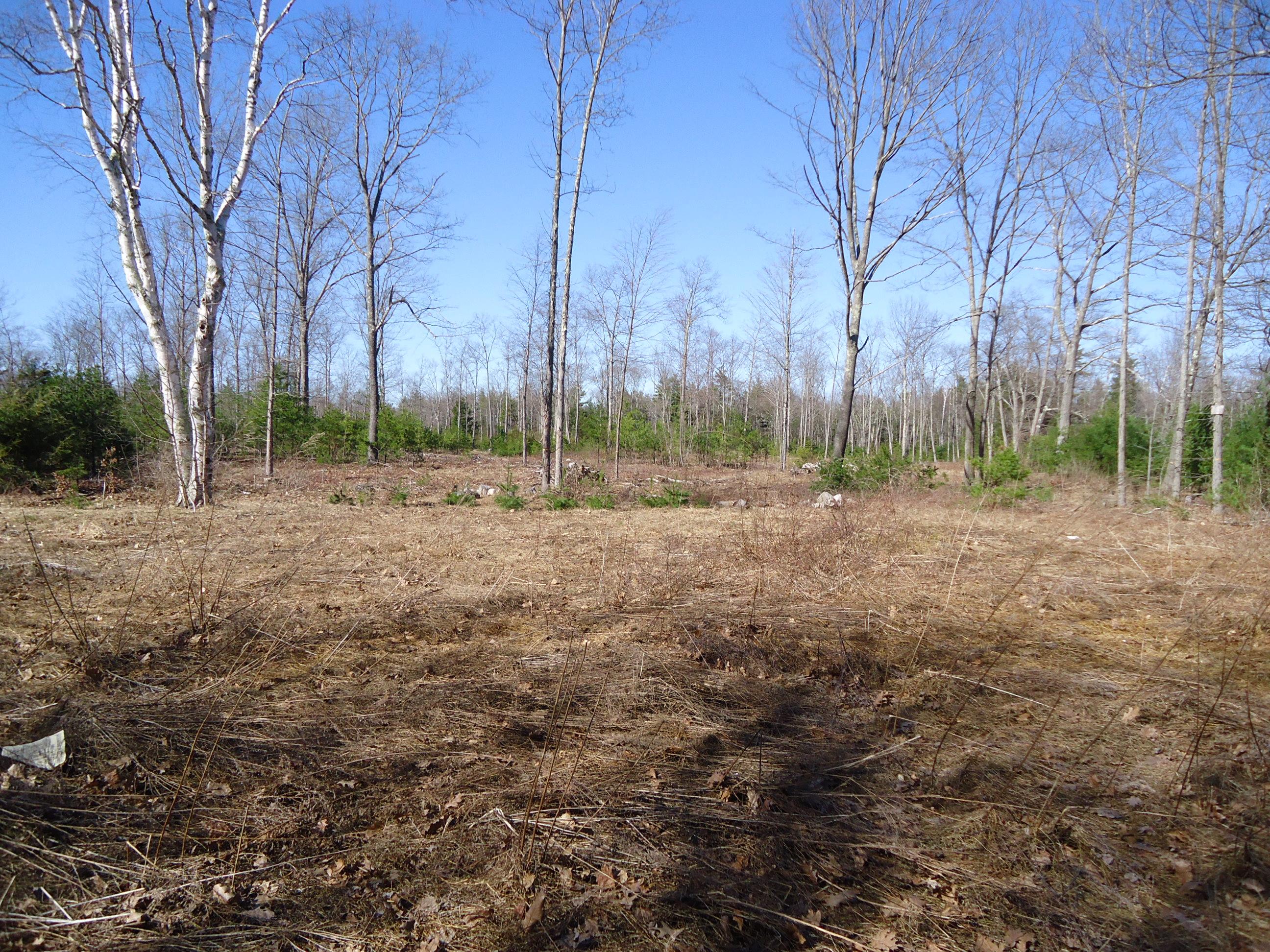 455 Burnt Mill Road, Wells, Maine 04090