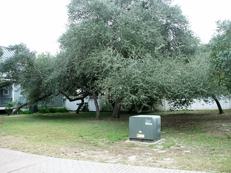 8 Old Cottage Beach Dr., Rockport, Texas 78382