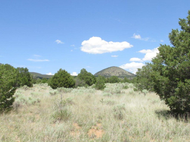 Lot 6 B Via De Benado, Carrizozo, New Mexico 88301
