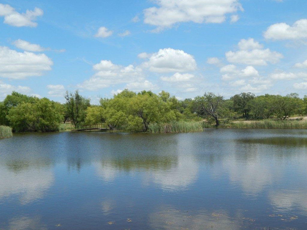 6700 CR 411, Brownwood, Texas 76801
