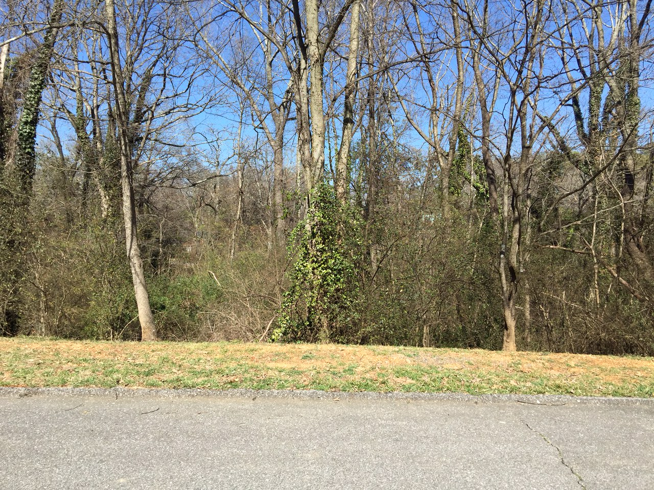 0 Brownwood Dr, Chattanooga, Tennessee 37404