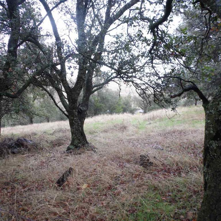 0 Greenstone , Sutter Creek, California 95685