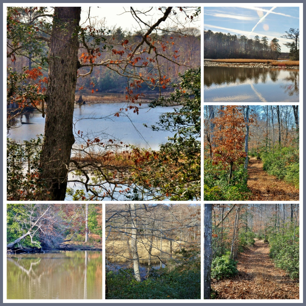 6616 Cranston's Mill Pond Road, Toano, Virginia 23168