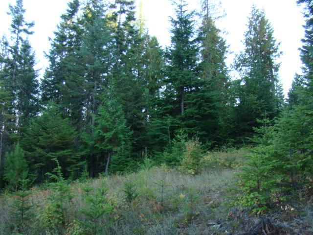 0 Sed Run Trail, Clark Fork, Idaho 83811