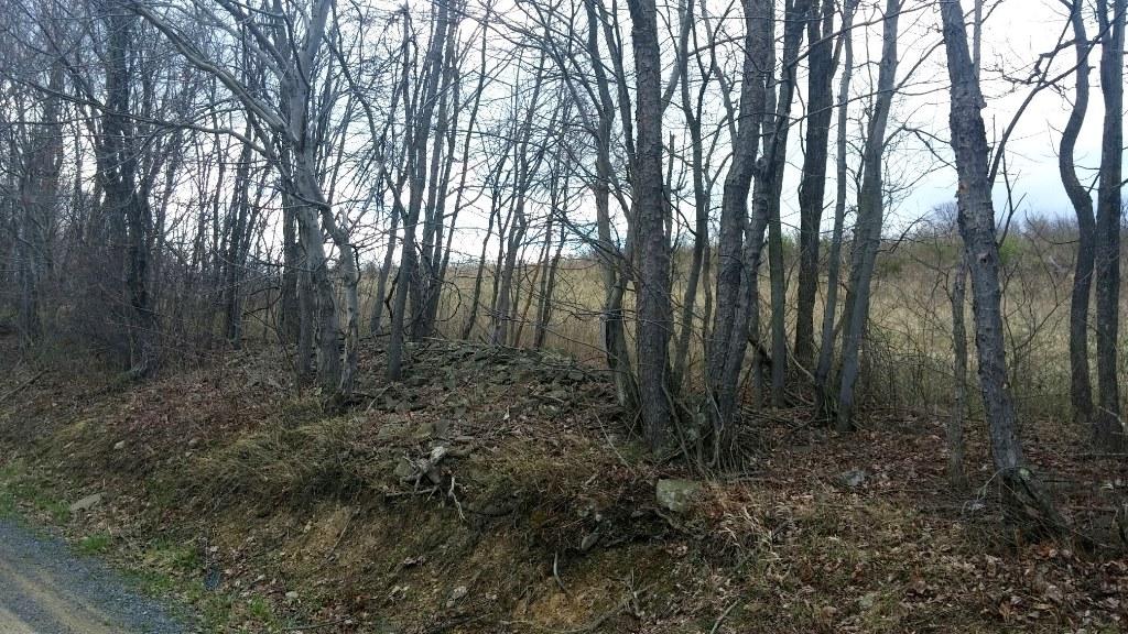 Ridge Road, Buffalo Mills, Pennsylvania 15534