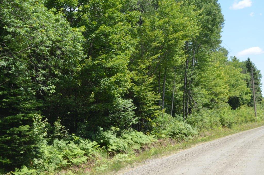 Ravenscliffe Road (Lot 4), Huntsville, CAN P1H2J2