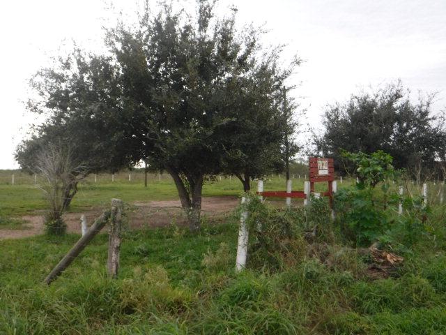 0 Charles Green Road, Monte Alto, Texas 78538