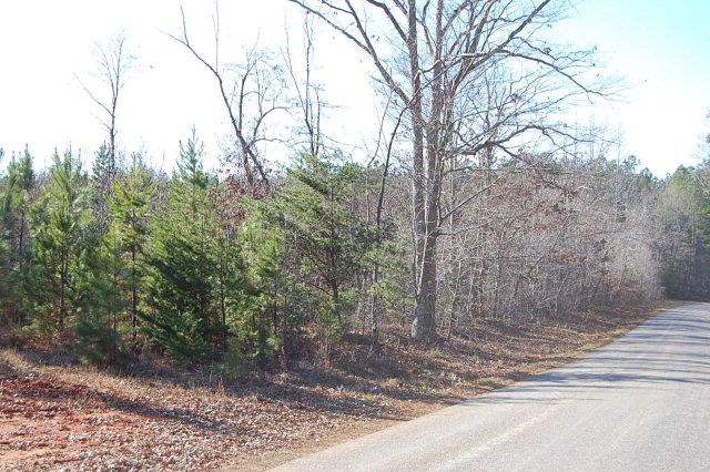 Mays Road, Nutbush, Virginia 23952