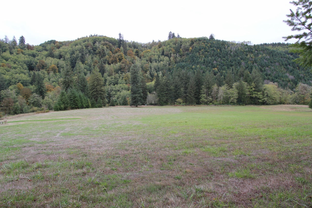 LOT 1001 NASHVILLE ROAD, Eddyville, Oregon 97343