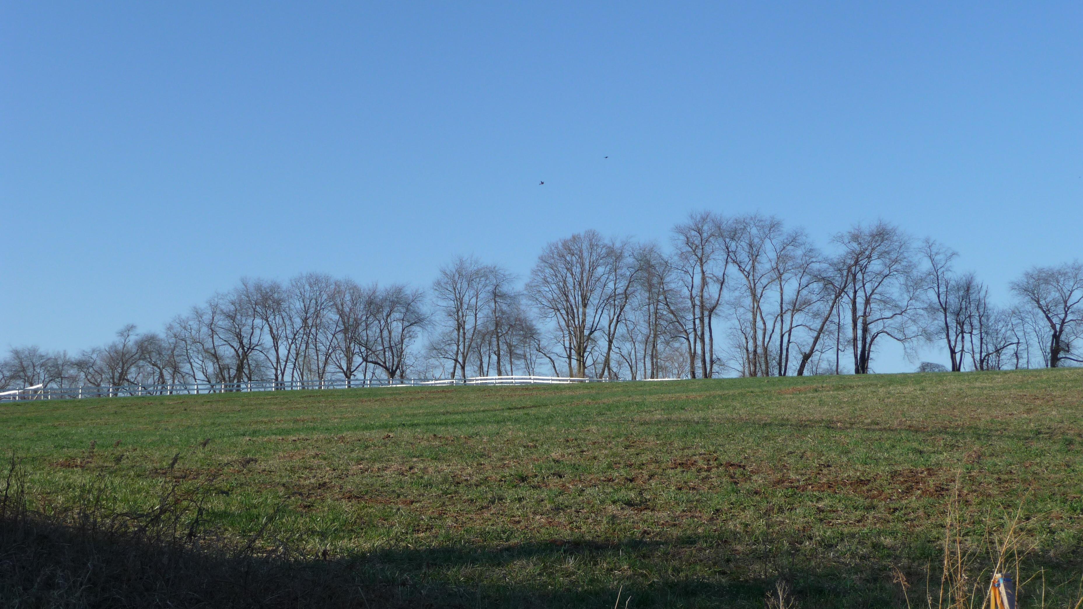 Lot 2 Park Road, Winfield, Pennsylvania 17889