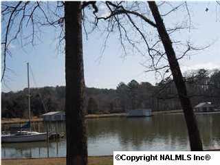 Morrow Drive, Guntersville, Alabama 35976