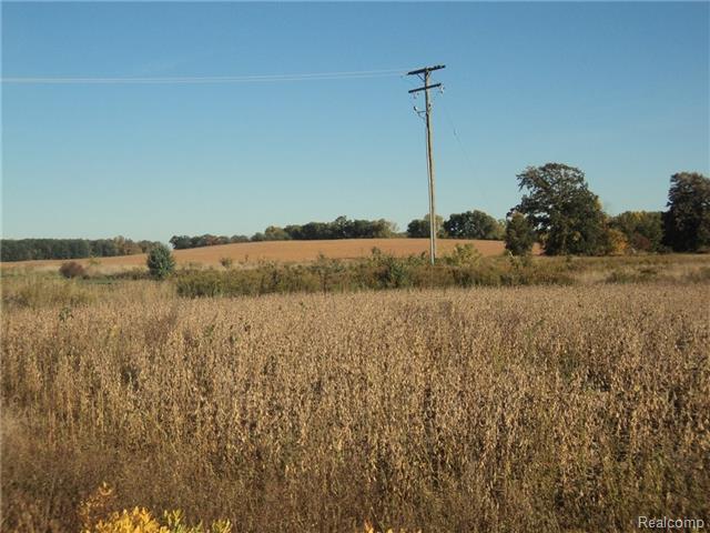 VL Daisy Lane, Conway Twp, Michigan 48872