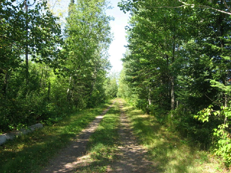 160 Acres North Star Dr, Merrill, WI 54452