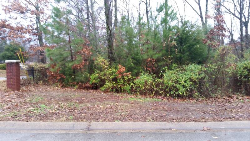 Lots 1,2,3 4 & 6 Shady Vall, Jonesboro, AR 72401