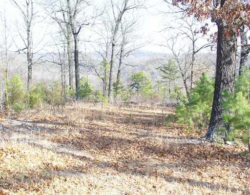 3 Smokey Ridge Ct, Eureka Springs, Arkansas 72631