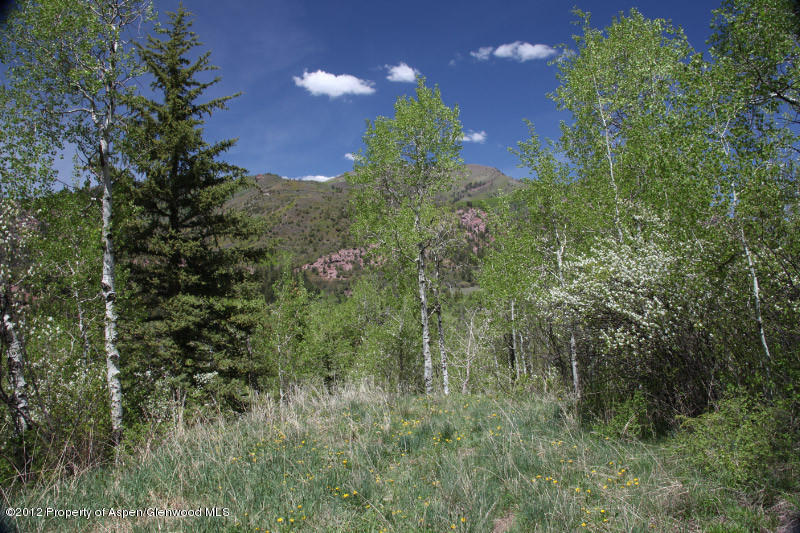 315  Firehouse Rd, Redstone, CO 81623