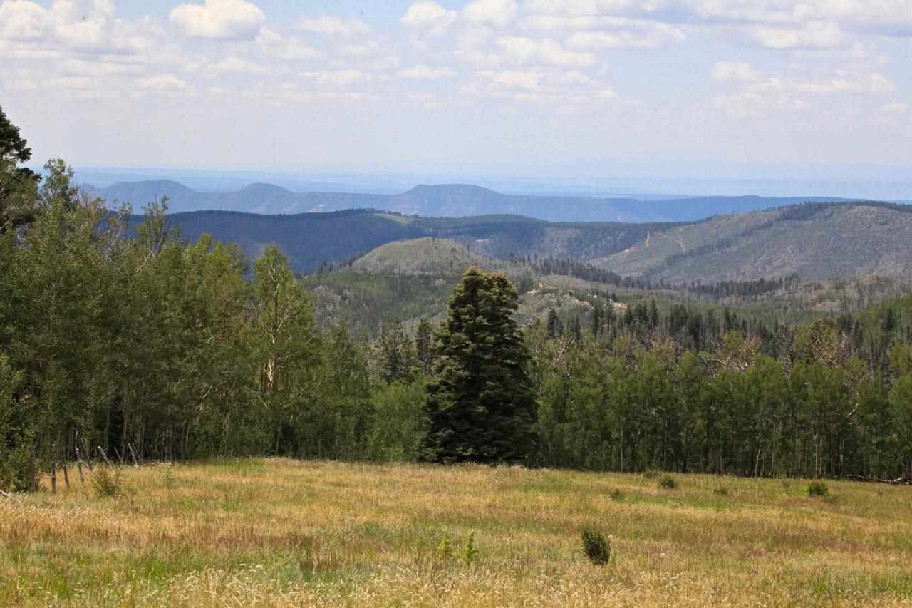 Forest Road 92, Pecos, NM 87552