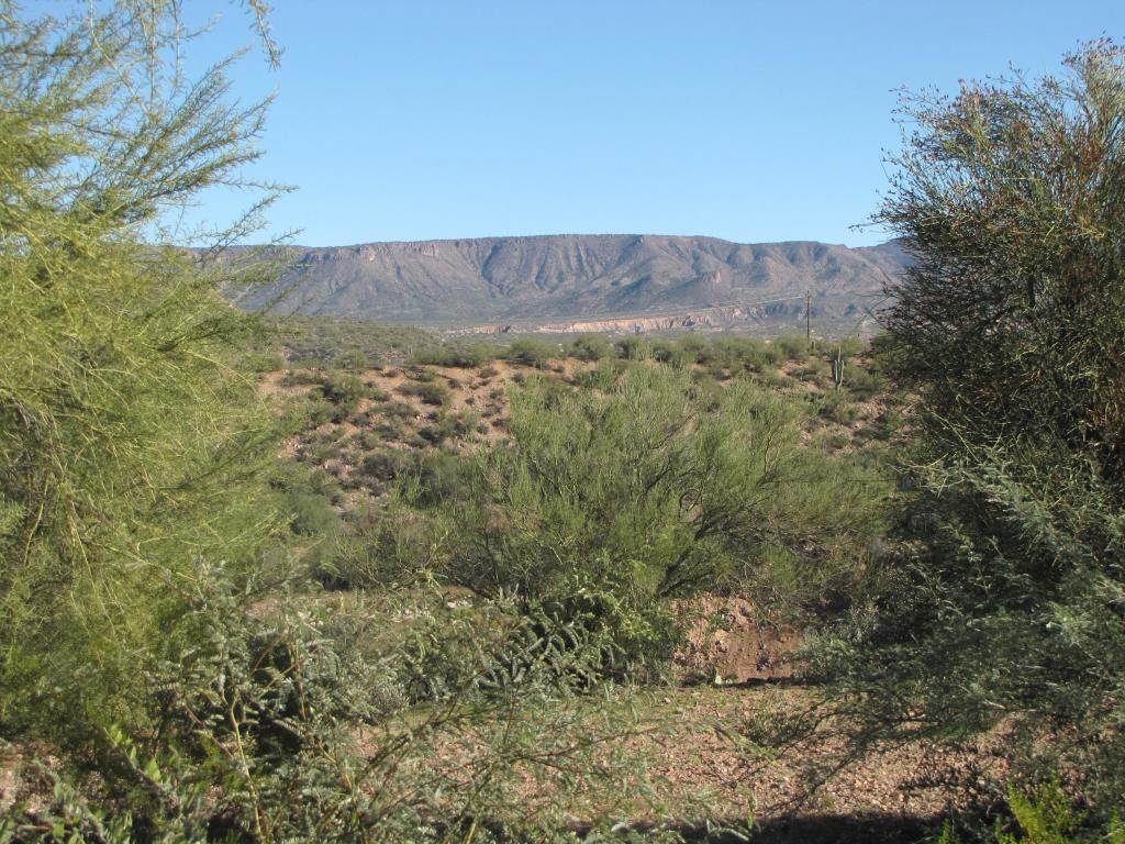 50 S Windy Hill, Roosevelt, AZ 85545