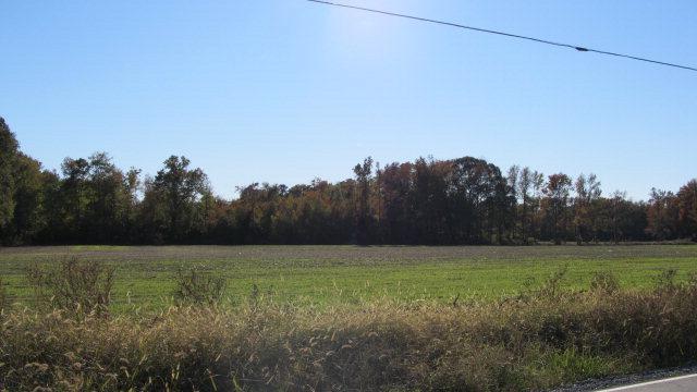 0 Nelsonia Rd., Nelsonia, Virginia 23414