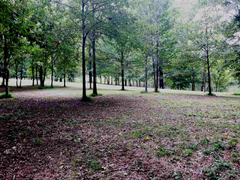 LOT 11 OAKWOOD DR, Unincorporated, TN 38015