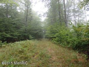 Schoedel, Manistee, MI 49660