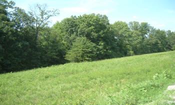 Lot 46 Shepperd Subdivision, Nancy, Kentucky 42544