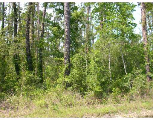 Peapatch Rd, Biloxi, MS 39532
