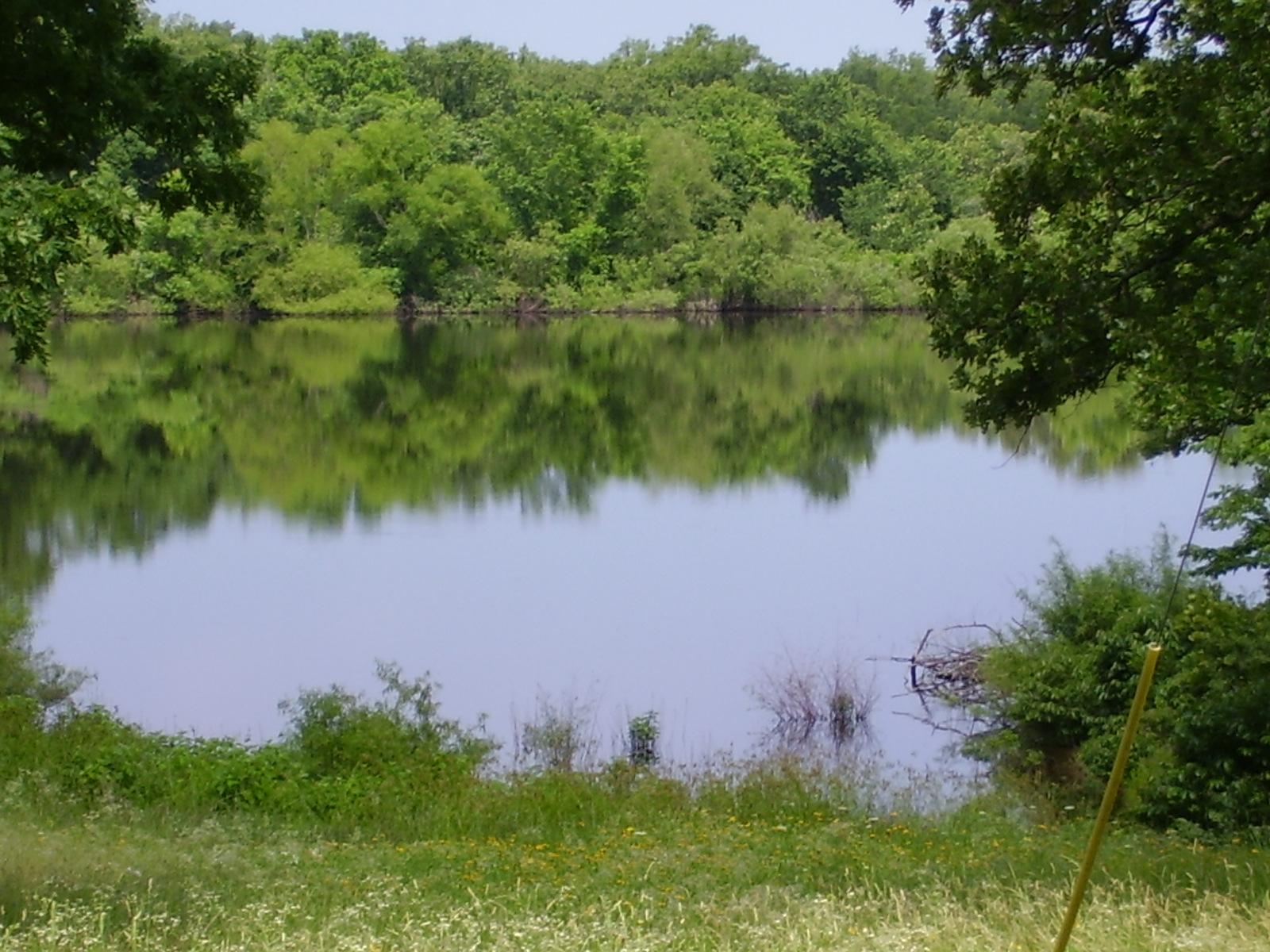 Lake of the Woods, Macks Creek, Missouri 65786