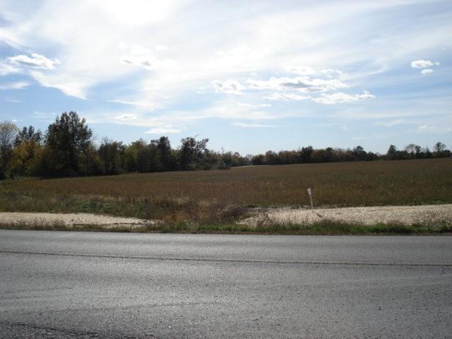 53 acres Wells By Pass Road, Mt Vernon, Illinois 62864