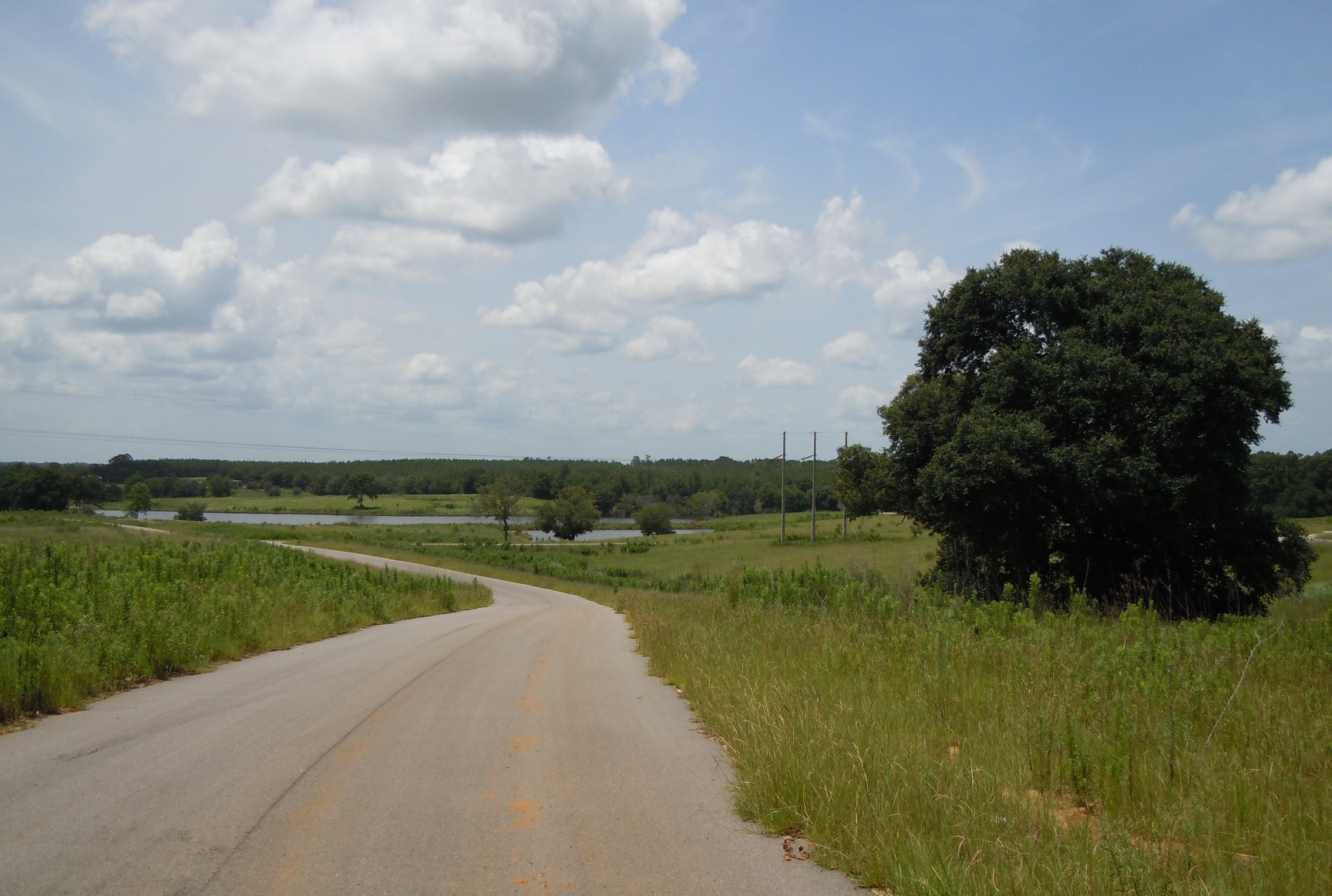 Lot 17 R Williams Ln, Lucedale, Mississippi 39452